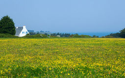 Beautiful rural landscape. Of Belle-Ile-en-Mer in Brittany, France Royalty Free Stock Photography