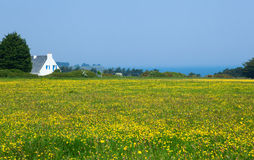 Beautiful rural landscape of Belle-Ile-en-Mer Royalty Free Stock Photos