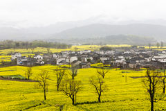 Beautiful rural landscape in China Royalty Free Stock Image
