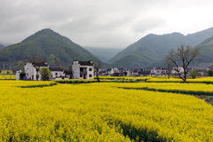 Beautiful rural landscape in China Stock Images