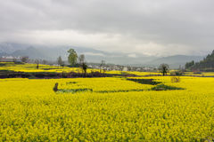 Beautiful rural landscape in China Stock Image
