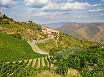 Beautiful rural landscape in the Douro region Stock Image