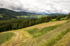 Beautiful rural landscape, field, forest, lake, small houses in the distance, Norway Royalty Free Stock Photo