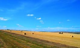 Beautiful rural landscape, harvesting Stock Photos