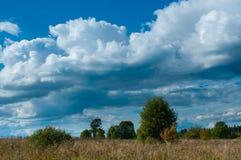 Beautiful rural landscape Stock Images