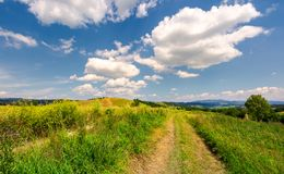 Beautiful rural landscape in mountains. Lovely summer scenery. road through agricultural field under the blue sky with fluffy clouds Stock Photos