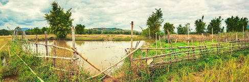 Beautiful rural landscape, pond on the foreground. Laos. Panoram Royalty Free Stock Photography