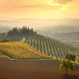 Beautiful rural landscape - Tuscany, Italy Stock Image