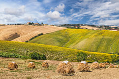 Beautiful rural landscape in Tuscany, Italy Royalty Free Stock Photos