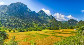 Beautiful rural landscape.Vang Vieng, Laos. Panorama Royalty Free Stock Photography