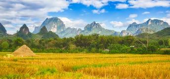 Beautiful rural landscape.Vang Vieng, Laos. Panorama Stock Photography