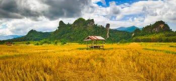 Beautiful rural landscape.Vang Vieng, Laos. Panorama Stock Photos