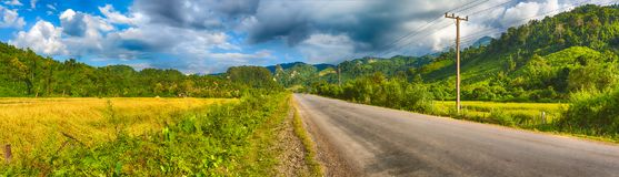 Beautiful rural landscape.Vang Vieng, Laos. Panorama. Road, rice field and mountains. Beautiful rural landscape. Vang Vieng, Laos. Panorama Royalty Free Stock Photos
