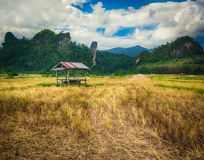 Beautiful rural landscape.Vang Vieng, Laos. Stock Photos