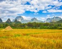 Beautiful rural landscape.Vang Vieng, Laos. Stock Photography