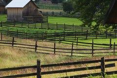 Beautiful rural scene in Bucovina Stock Photos