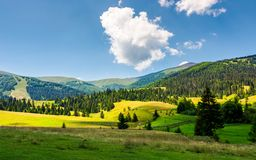 Beautiful rural scenery in mountains. Haystack on the grassy agricultural fields among the spruce forest on the hills Royalty Free Stock Image