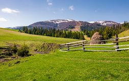 Beautiful rural scenery in springtime. Wooden fence and haystack on a grassy hillside at the foot of Borzhava mountain ridge with snowy tops Royalty Free Stock Images