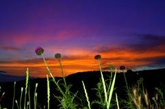 Beautiful rural twilight sky view Stock Photos