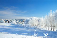 Beautiful rural winter landscape with the village and the forest Stock Image