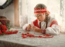A beautiful Russian girl diligently collects Rowan berries on a thread