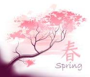 Beautiful sacura spring Royalty Free Stock Photo