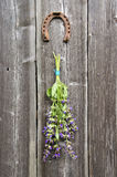 Beautiful sage (Salvia officinalis) medical plant bunch and horseshoe on  wall Stock Photography