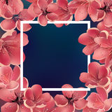 Beautiful Sakura Floral Template with White Square Frame. For Greeting Cards, Invitations, Announcements. Royalty Free Stock Photos