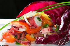 A beautiful salad with cabbage Stock Photos
