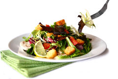 Beautiful Salad on White Stock Photos
