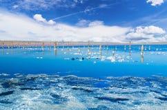 Beautiful salt lake Stock Images