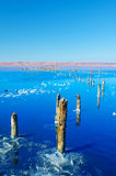 Beautiful salt lake Royalty Free Stock Images
