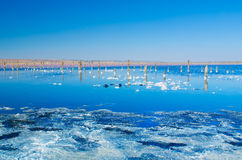Beautiful salt lake Royalty Free Stock Image
