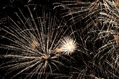 Beautiful salute and fireworks with the black sky background. Abstract holiday background with various colors fireworks light up. Royalty Free Stock Photo