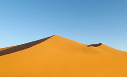 Beautiful sand desert dune royalty free stock photos