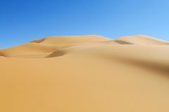 Beautiful sand desert dune royalty free stock photo