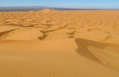 Beautiful sand desert dunes panorama in Sahara desert Stock Photography
