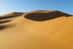 Beautiful sand desert landscape stock photo