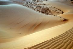 Beautiful sand dune and small stones. stock photography