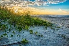 Beach Sand Dunes at Sunrise royalty free stock image
