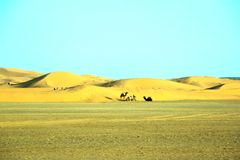 Beautiful sand dunes in the Sahara desert in Morocco.  Royalty Free Stock Photos