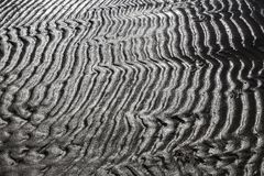 Sand formations. Beautiful sand formations have emerged at sea Royalty Free Stock Image
