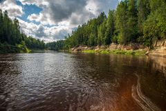 Beautiful sandstone cliffs on the shores of river Amata in Latvia. Fast forest river with dark water and green foliage royalty free stock images