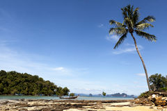 Beautiful sandy beach with palm trees and blue sky. Krabi Thailand. Royalty Free Stock Images