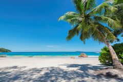Anse Lazio beach and the turquoise sea on Paradise island. Beautiful sandy beach with palm and the turquoise sea on Paradise island. La Digue, Seychelles Stock Image