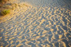Beautiful sandy beach- vacation, sun, sea. The beautiful sandy beach- vacation, sun sea royalty free stock image