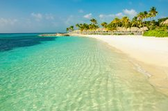 A beautiful sandy exotic beach with nwith high coconut palms Stock Images