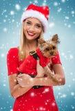 Beautiful santa woman, holding  santa yorkshite terrier, snowfall background Royalty Free Stock Image