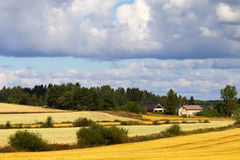 Beautiful Scandinavian landscape Royalty Free Stock Image