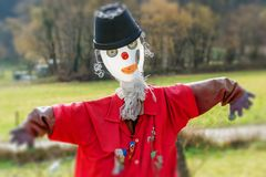The scarecrown Royalty Free Stock Image